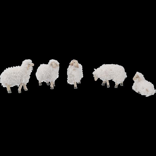 Ergänzungsset Schafe